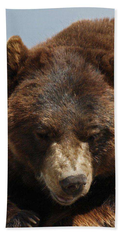 Bear Bath Sheet featuring the photograph The Bear 2 by Ernie Echols