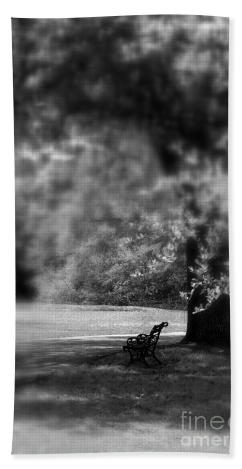 Bench Bath Sheet featuring the photograph The Bench In The Park by Susanne Van Hulst