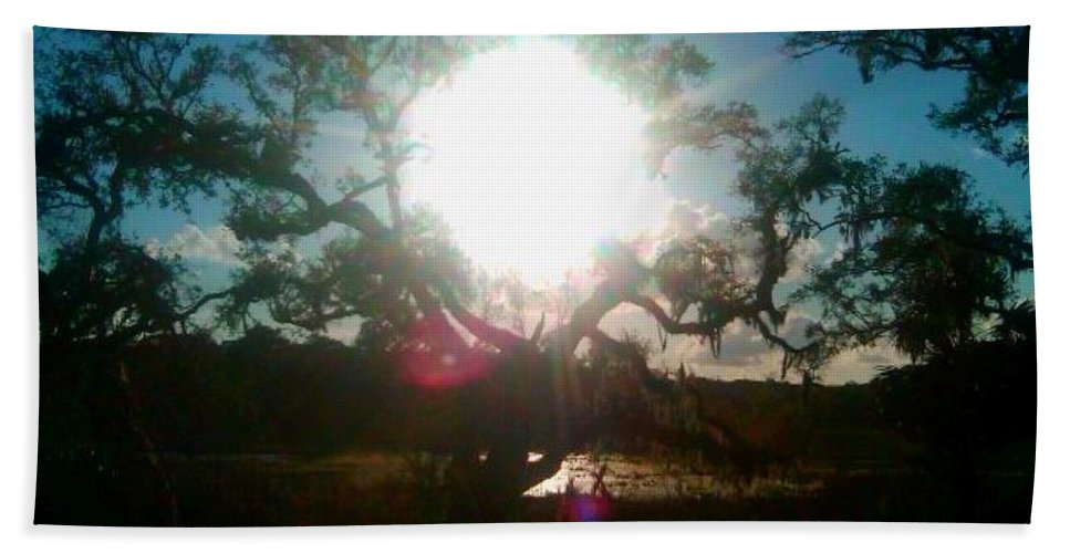 Wekiva Bath Sheet featuring the photograph The Burning Tree by Stefan Duncan