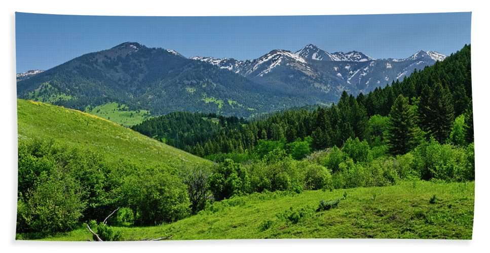 Americas Bath Sheet featuring the photograph The Crazy Mountains by Roderick Bley