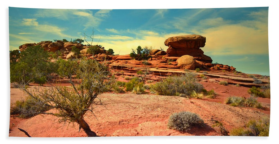 Canyonlands National Park Bath Sheet featuring the photograph The Desert And The Sky by Tara Turner