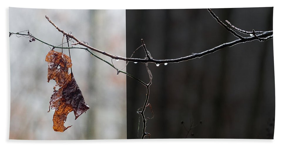 Winter Bath Sheet featuring the photograph The Edge Of Night by Ron Jones