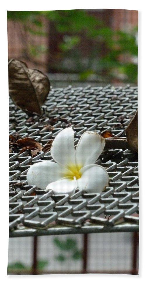 Singapore Bath Sheet featuring the photograph The Fallen Flower by Steve Taylor