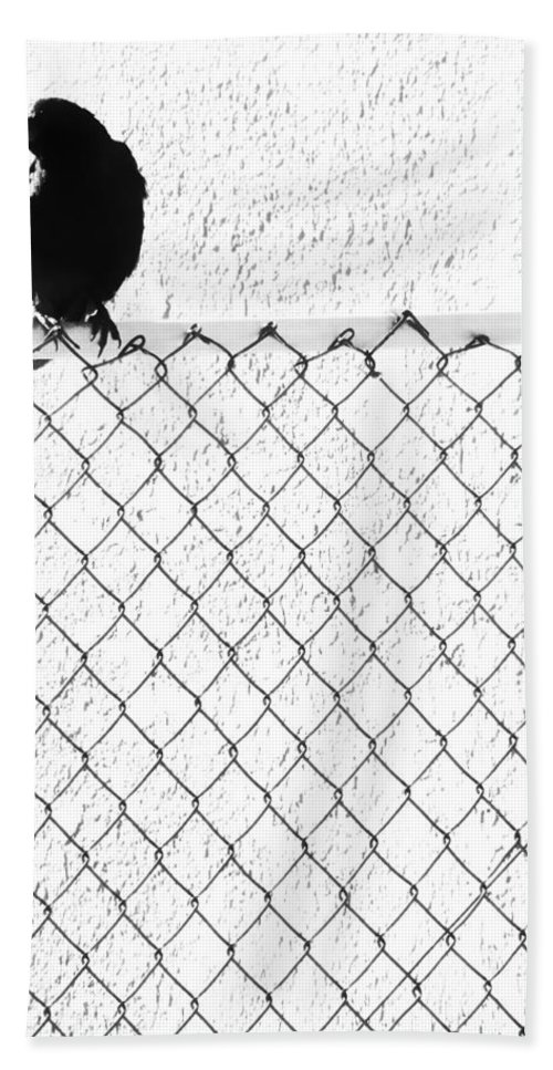 Crow Hand Towel featuring the photograph The Fence That Follows by The Artist Project