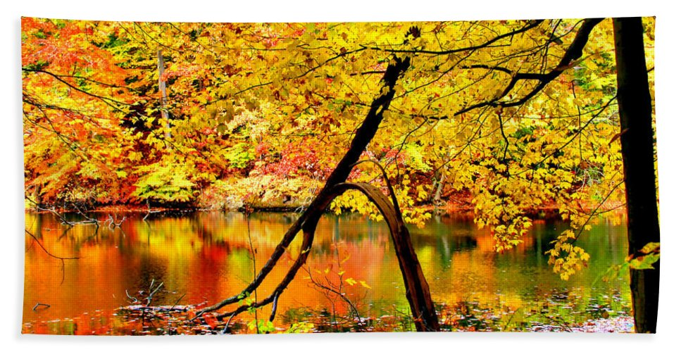 Autumn Hand Towel featuring the photograph The Final Bough by Kristin Elmquist