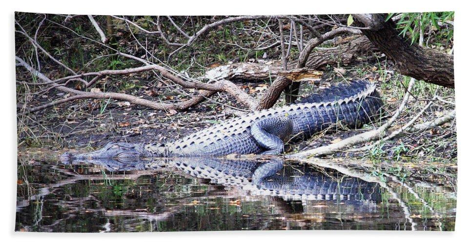 Gator Bath Sheet featuring the photograph The Gator That Lives Under The Bridge by Carol Groenen