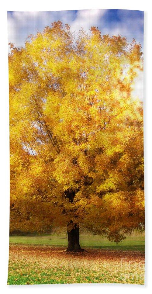 Fall Hand Towel featuring the digital art The Golden Tree by Lj Lambert
