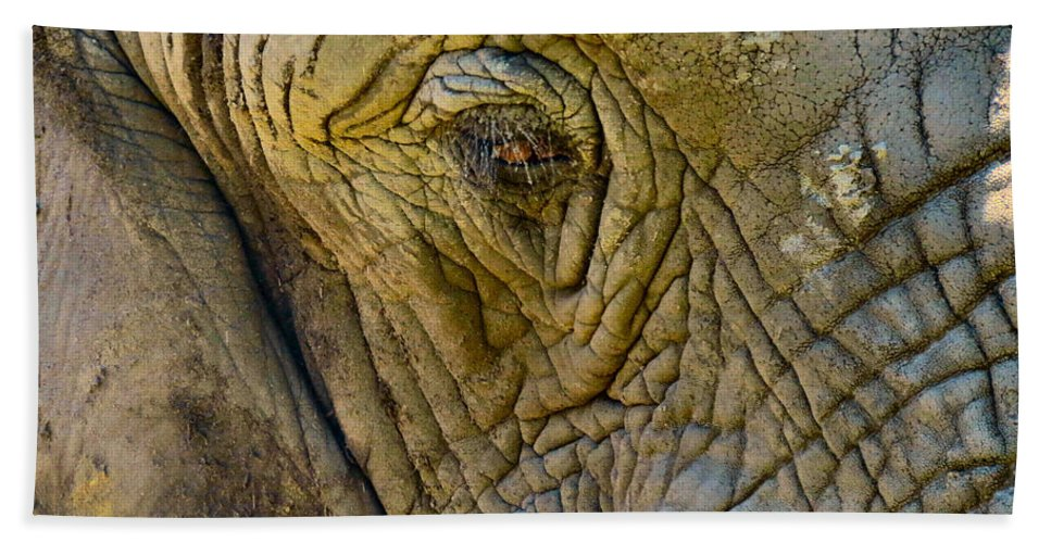 Elephant Bath Sheet featuring the photograph The Great by Art Dingo