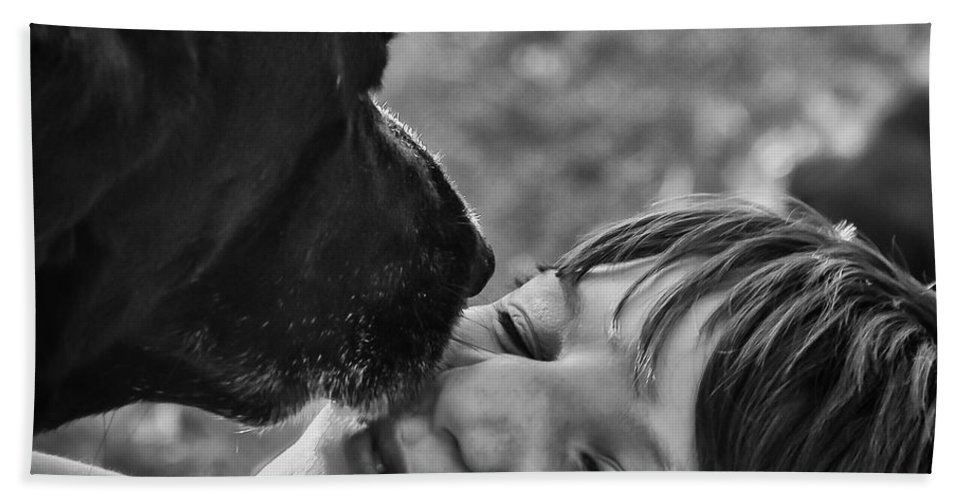Black Lab Bath Sheet featuring the photograph The Kiss by Roger Wedegis
