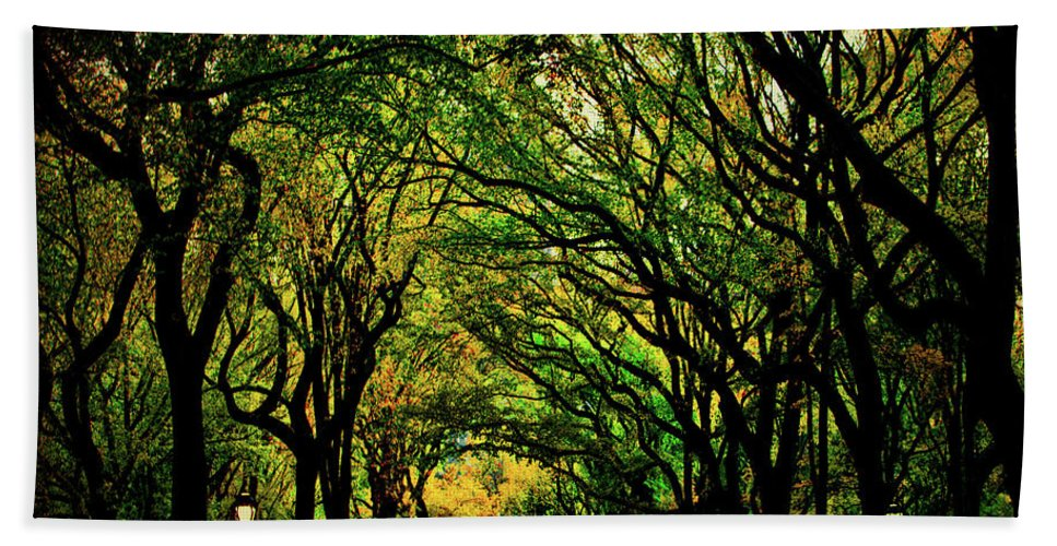 Autumn Bath Sheet featuring the photograph The Mall In Fall by Chris Lord