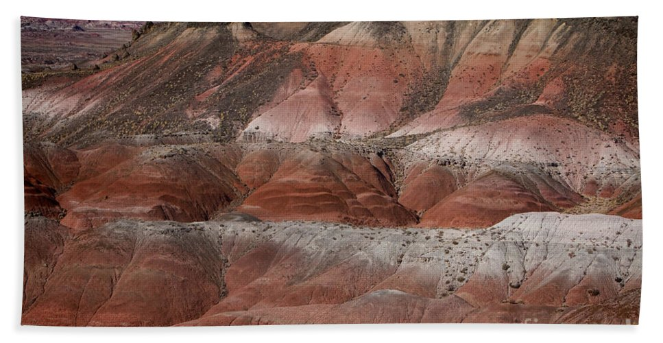 Arizona Bath Sheet featuring the photograph The Painted Desert 8018 by James BO Insogna