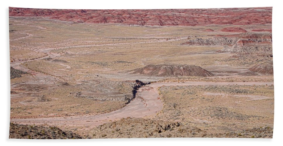 Arizona Bath Sheet featuring the photograph The Painted Desert 8042 by James BO Insogna