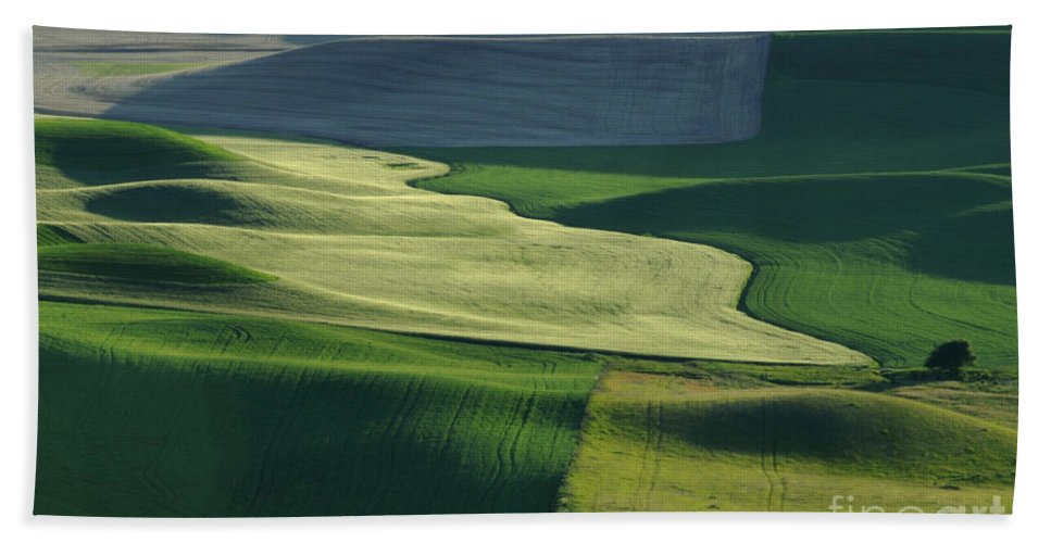 Palouse Hand Towel featuring the photograph The Palouse 4 by Bob Christopher