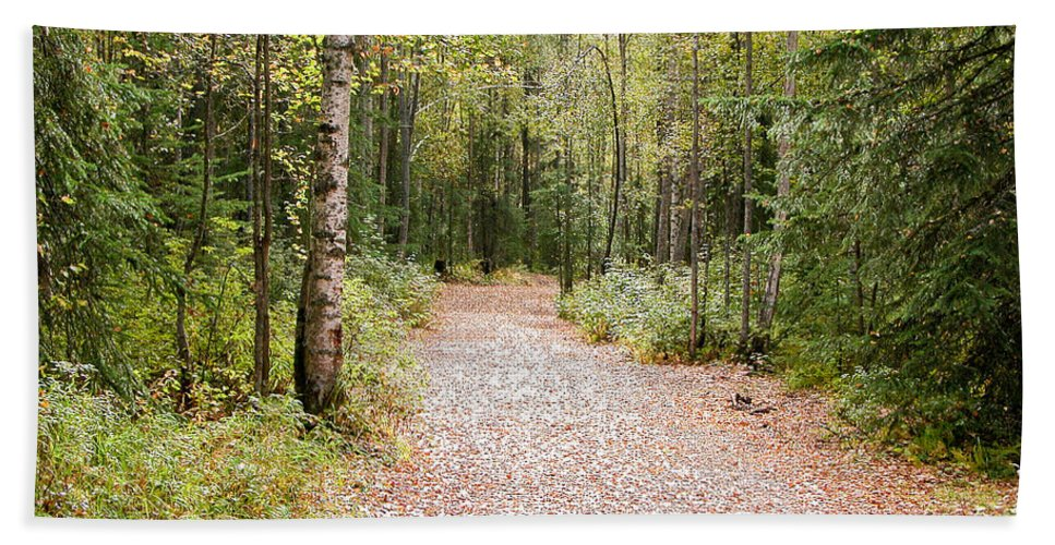Green Bath Sheet featuring the photograph The Path by Peggy Starks