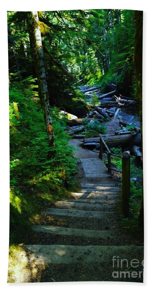 Path Hand Towel featuring the photograph The Path To Iron Creek by Jeff Swan