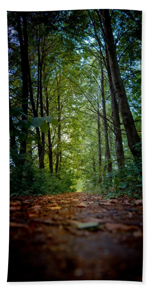 Alley Hand Towel featuring the photograph The Pathway In The Forest by Michael Goyberg
