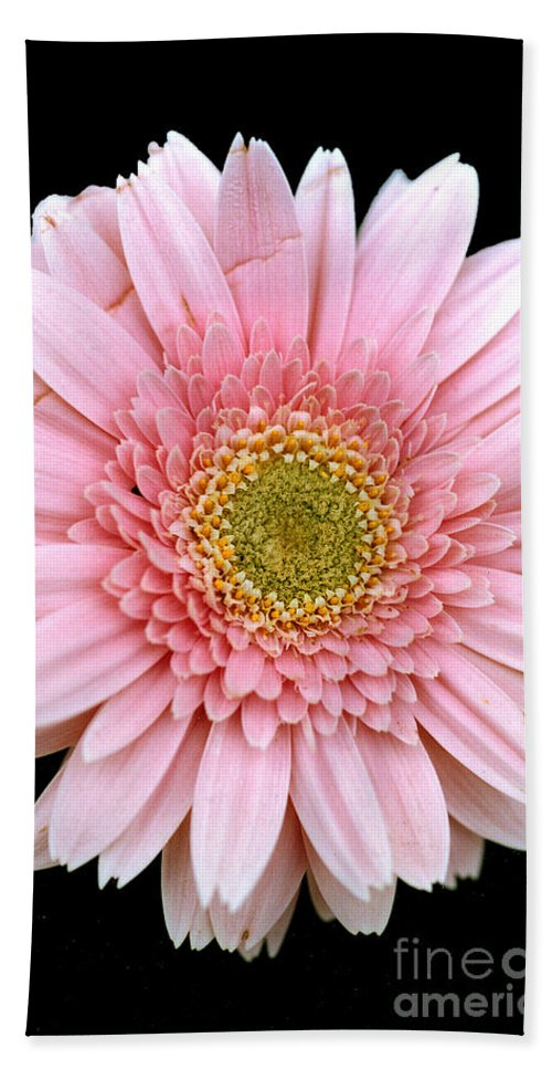 Flower Hand Towel featuring the photograph The Pink Flower by Mike Nellums
