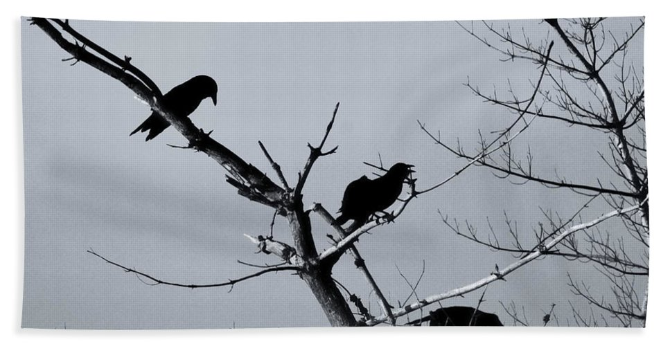 Ravens Bath Sheet featuring the photograph The Raven Tree by Susan Capuano
