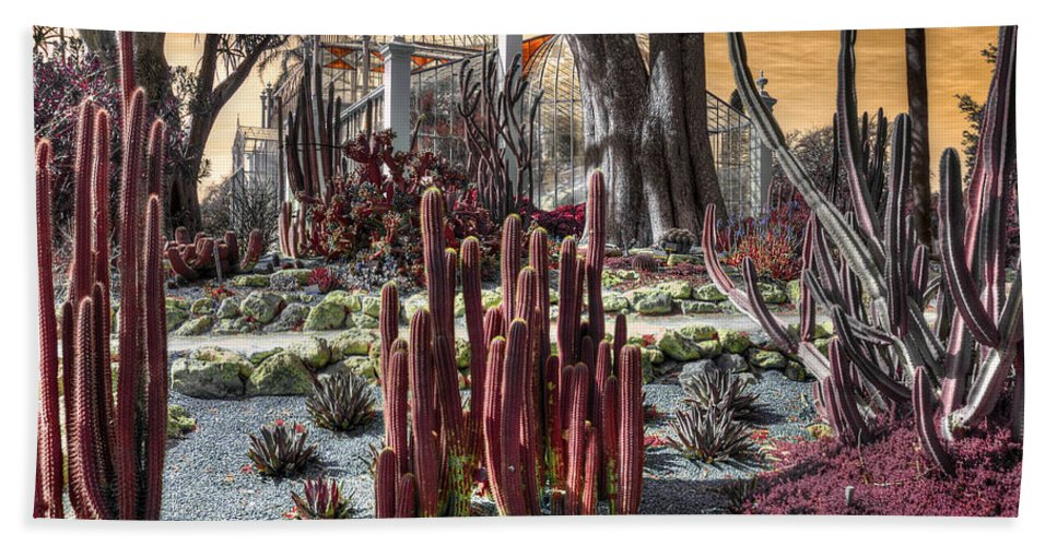 Trees Hand Towel featuring the photograph The Real World by Wayne Sherriff