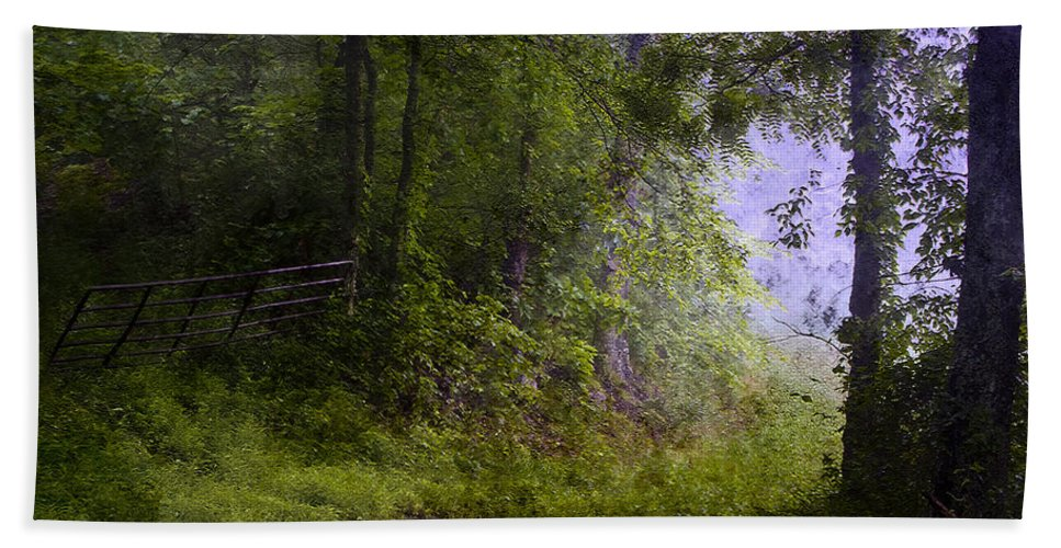 Summer Bath Sheet featuring the photograph The Road Less Traveled by Ron Jones