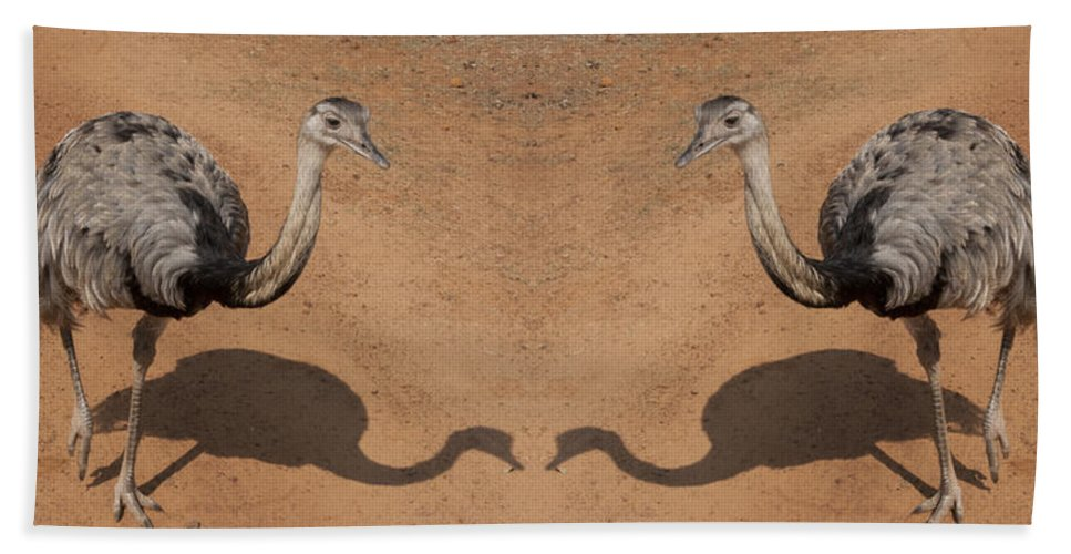 Rhea Hand Towel featuring the photograph The Same Here by Douglas Barnard