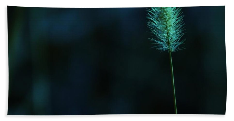 Autumn Hand Towel featuring the photograph The Solitude Near The End by Jeff Swan