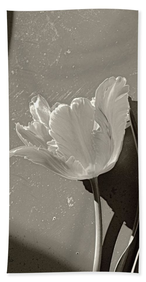 Nature Bath Sheet featuring the photograph The Tulip And The Shadows by Chris Berry