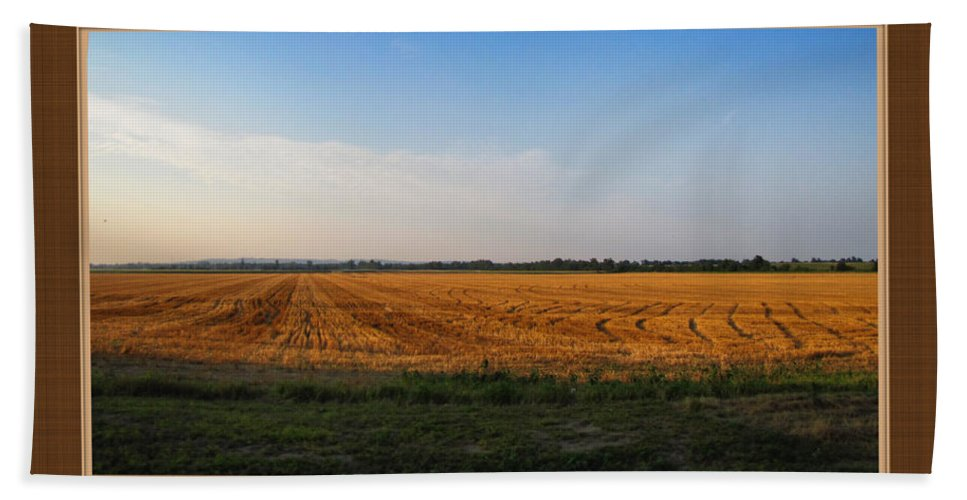 Bath Sheet featuring the photograph The Wheat Is In by Debbie Portwood
