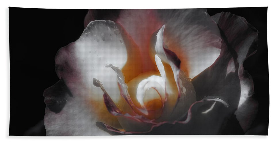 Florals Bath Sheet featuring the photograph The Wonder Of It by Linda Dunn