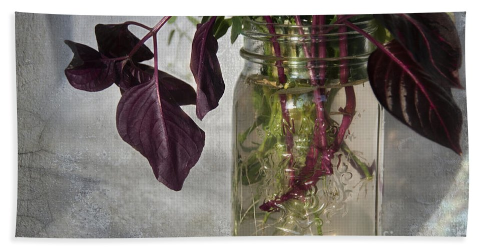 Roots Hand Towel featuring the photograph The World In A Mason Jar by David Arment