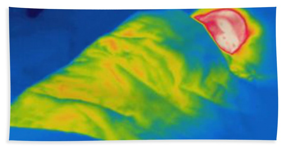 Thermogram Hand Towel featuring the photograph Thermogram Of A Child Sleeping by Ted Kinsman