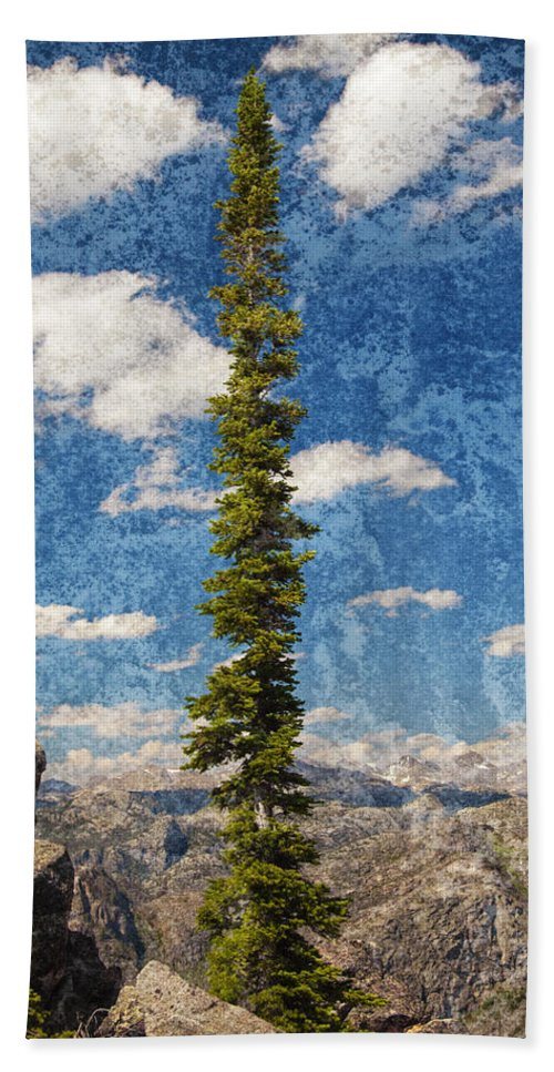 Tree Hand Towel featuring the photograph Thin Air by John Stephens