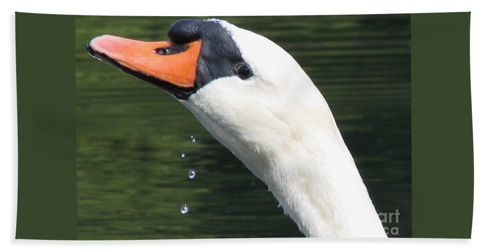 Swan Hand Towel featuring the photograph Thirst by Art Dingo