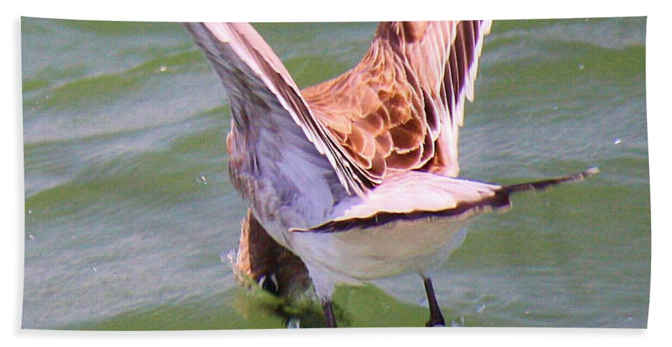 Roena King Hand Towel featuring the photograph This Is How You Catch Them by Roena King
