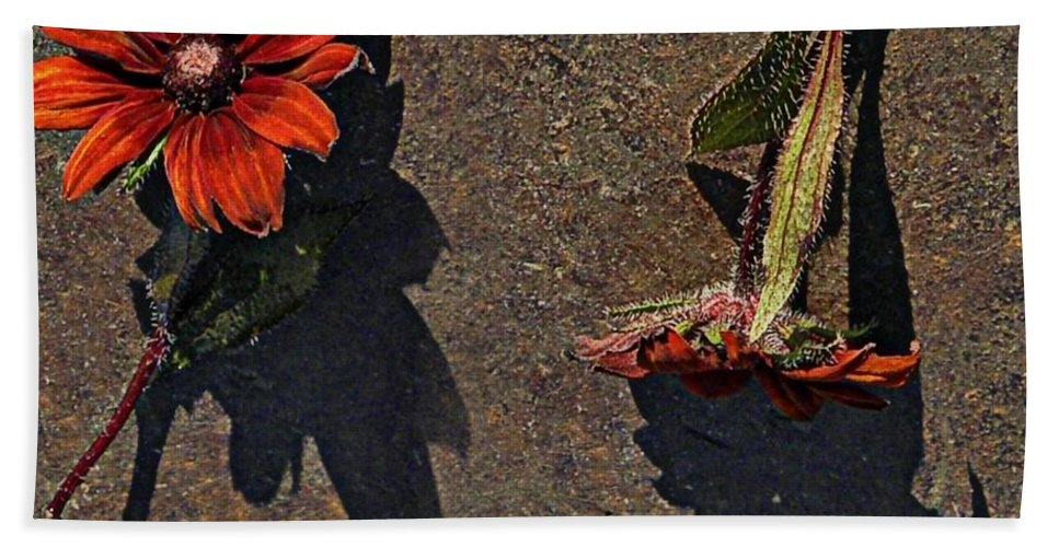 Nature Bath Sheet featuring the photograph This Way And That Way by Chris Berry