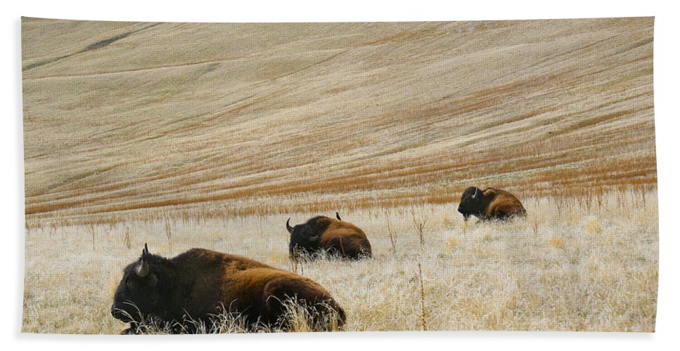 Utah Bath Sheet featuring the photograph Three Bison by Marilyn Hunt