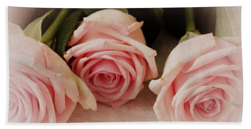 Roses Hand Towel featuring the photograph Three Pink Roses by Lainie Wrightson