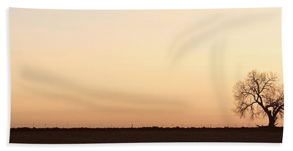 'boulder County' Bath Sheet featuring the photograph Three Trees Panorama by James BO Insogna