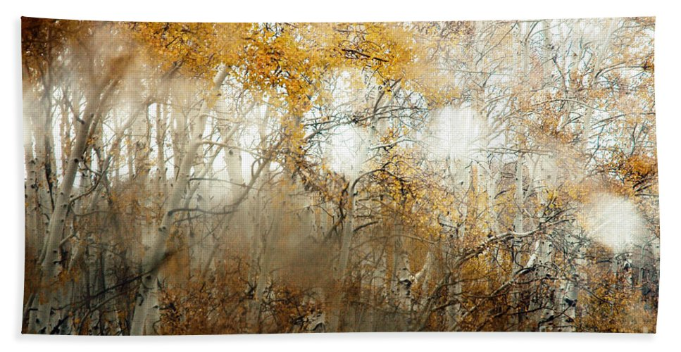 Trees Hand Towel featuring the photograph Through The Fog by Vivian Christopher