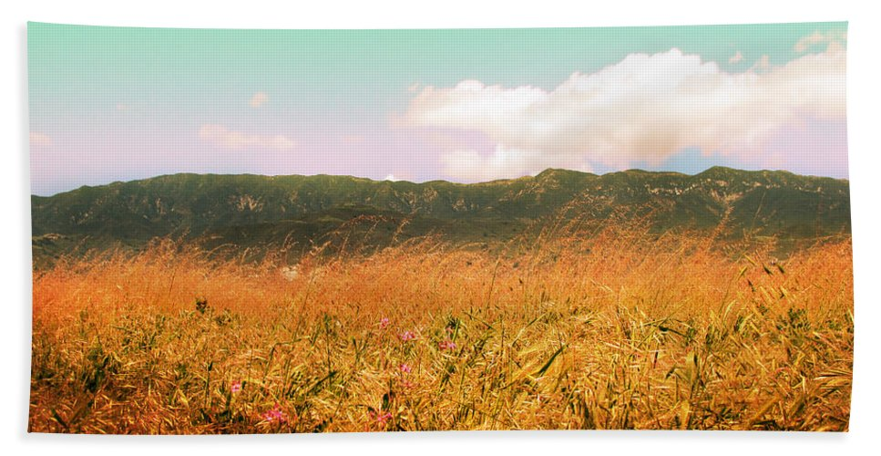 Carpinteria Hand Towel featuring the photograph Through The Grasses by Kathleen Grace