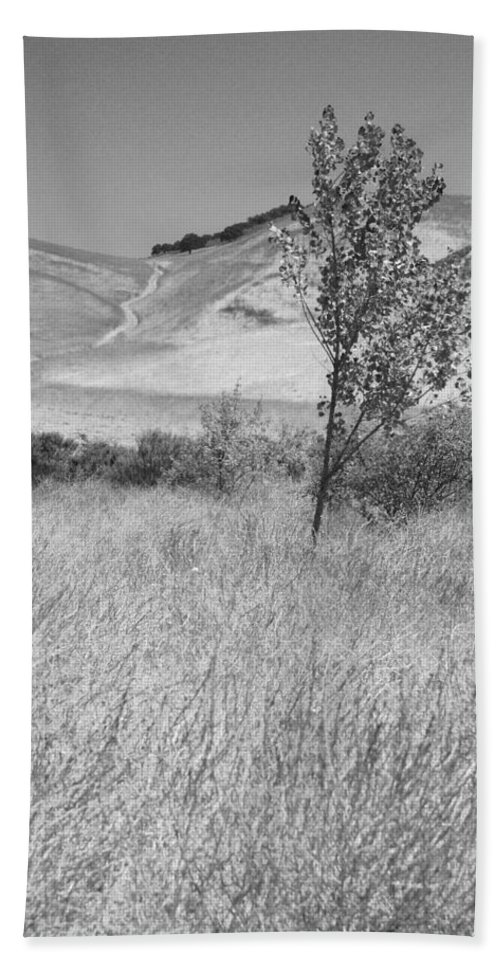 Los Alamos Bath Sheet featuring the photograph Through The Tall Grasses by Kathleen Grace