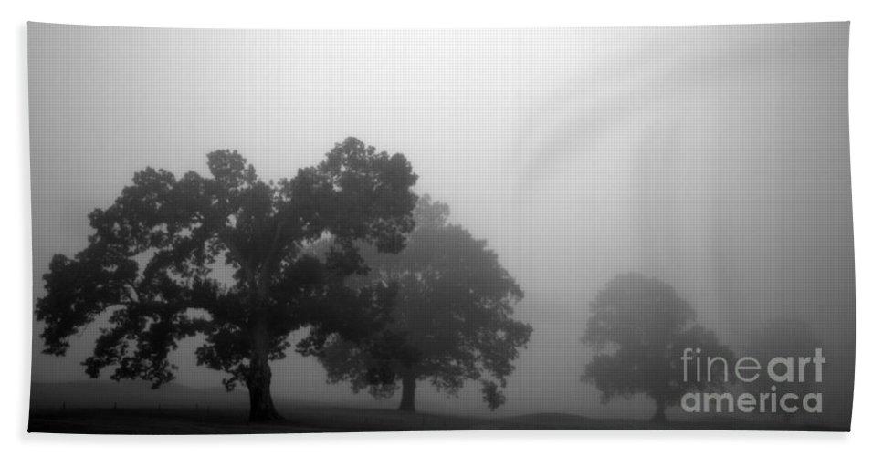 Fog Bath Sheet featuring the photograph Through Time by Amanda Barcon
