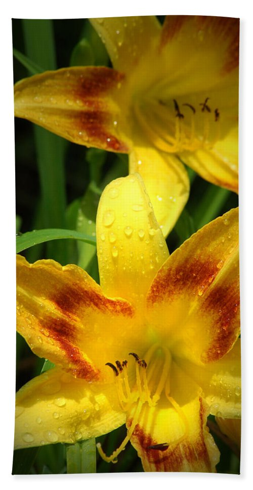 Flower Hand Towel featuring the photograph Tiger Lilies by David Weeks