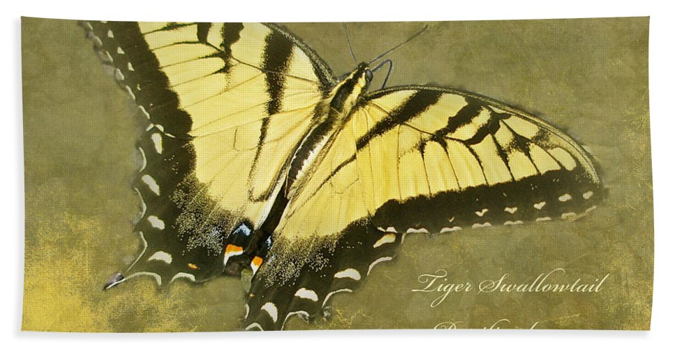 Butterfly Bath Sheet featuring the photograph Tiger Swallowtail Butterfly - Papilio Glaucas by Mother Nature