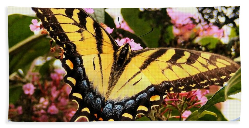 Butterfly Hand Towel featuring the photograph Tiger Tail by Art Dingo
