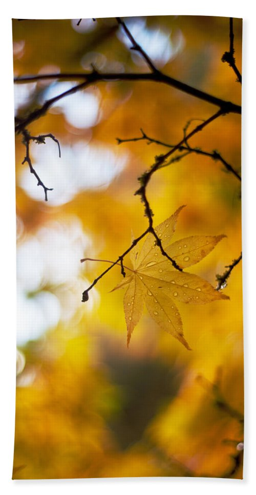 Autumn Bath Sheet featuring the photograph Time Of The Season by Mike Reid