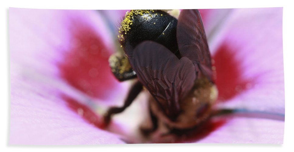 Bees Bath Sheet featuring the photograph Top Heavy by Kim Henderson
