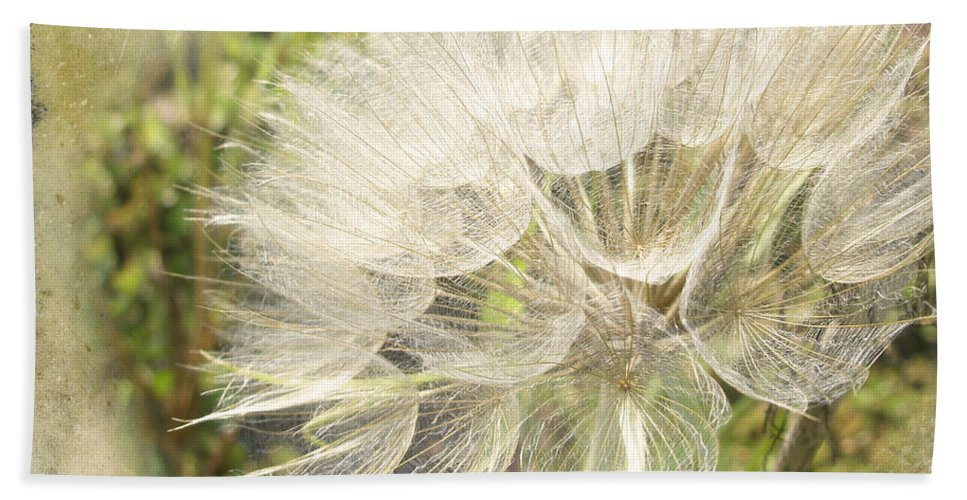 Yellow Bath Sheet featuring the photograph Tragopogon Dubius - Yellow Goats Beard by Mother Nature