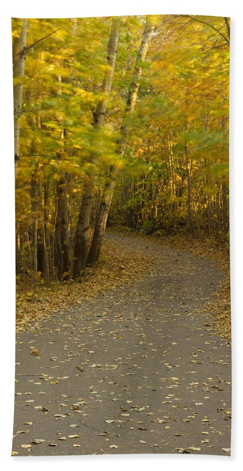 Trail Bath Sheet featuring the photograph Trail Scene Autumn Abstract 3 by John Brueske