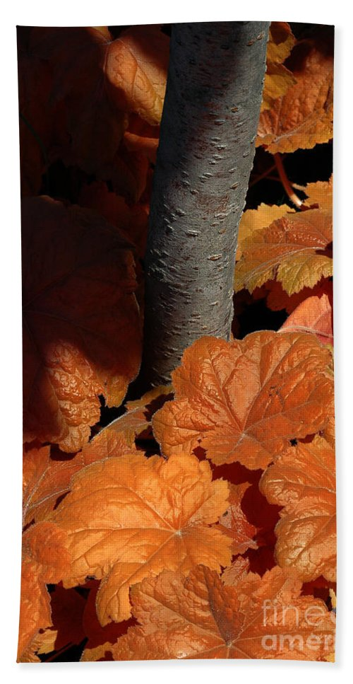 Tree Bath Sheet featuring the photograph Tree And Pumpkin-like Leaves by Mike Nellums